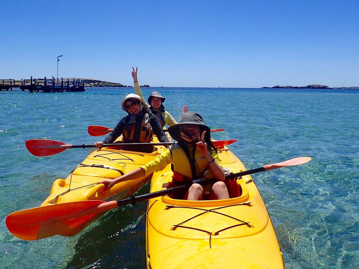 Penguin Island, Sea kayak, paddle to penguin, eco tour, rockingham wild encounters, shoal water islands marine park, kayak perth, capricorn sea kayaking,