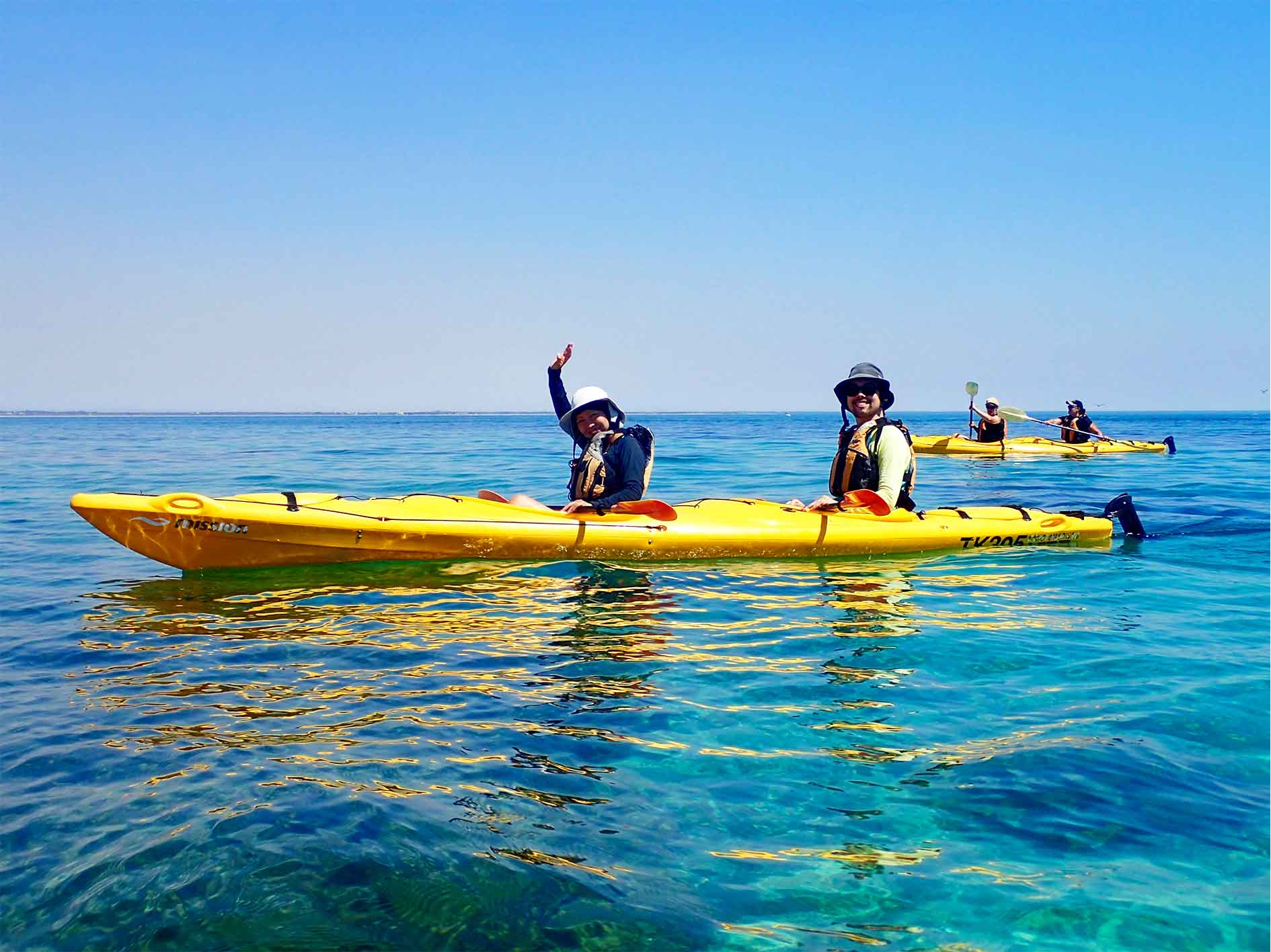 Sea kayak tour Perth, sea kayak eco tour, things to do in perth, Paddle to Penguin, Penguin and Seal Island, Sea kayak tour, eco tour, perth, western australia, rockingham, wild encounters, capricorn sea kayaking, Penguin Island sea kayak
