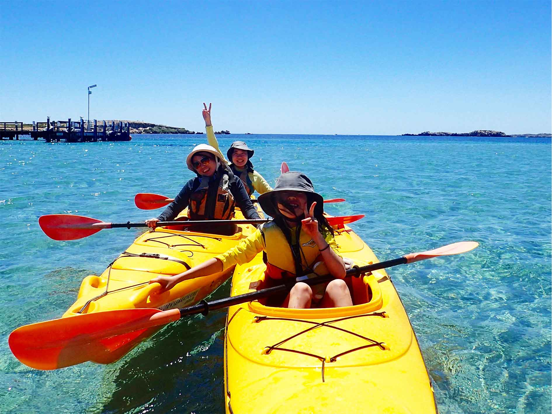 sea kayak tour, sea kayak Perth, kayak tour Perth, sea kayaking Perth, Penguin and Seal Island, eco tour kayak tour Penguin Island, wildlife tours, Nature tours Perth, Rockingham, Shoalwater Islands Marine Park, Safety Bay, Rockingham Wild Encounters, penguin, dolphin, sea lion, guided tour Perth, day tour, 1 Day Wildlife Adventure, Paddle to Penguin, Capricorn Seakayaking