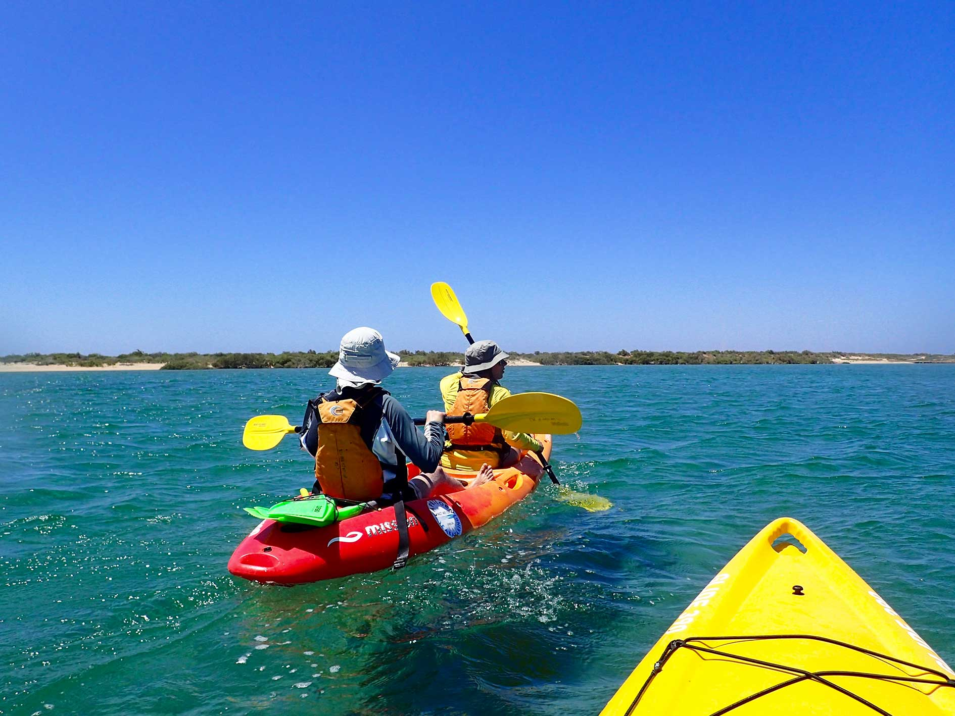 sea kayak courses, sea kayak training, Australian Canoeing, sea kayak skills, Capricorn Seakayaking, sea kayak Perth, sea kayak tour, Penguin Island, coastal guide course, sit on top course